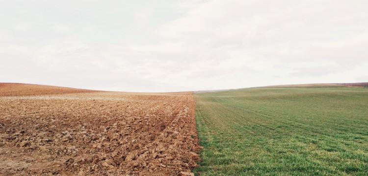 Bodenprobe: Bodenuntersuchung bei außerfamiliäre Hofübergaben