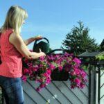 Balkongeländer genial bepflanzen: Startup Balkon-Oase sorgt für eine schönere Welt