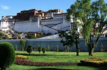 Dalai Lama: Was ein Gründer von ihm lernen kann
