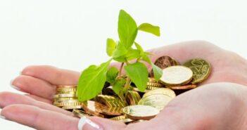 Hohe Rendite, reines Gewissen und viel Sicherheit: Über die Phantasien der Investoren