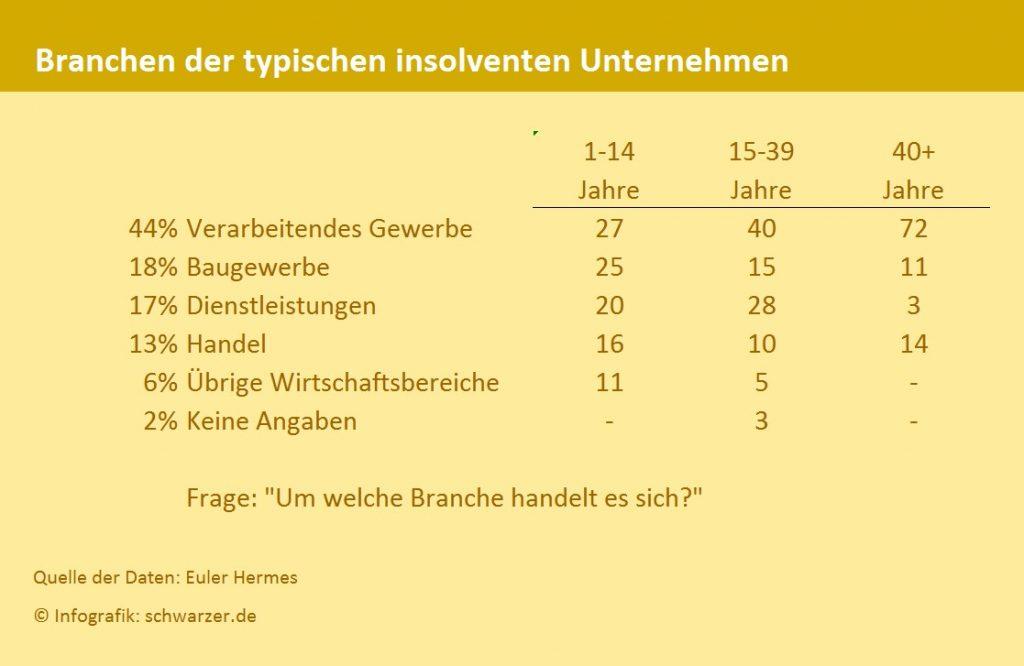 Infografik: Häufigste Branche und Gründe für eine Insolvenz.