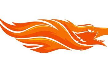 Wie der Phoenix aus der Asche: Amerika hat seine Chance entdeckt.