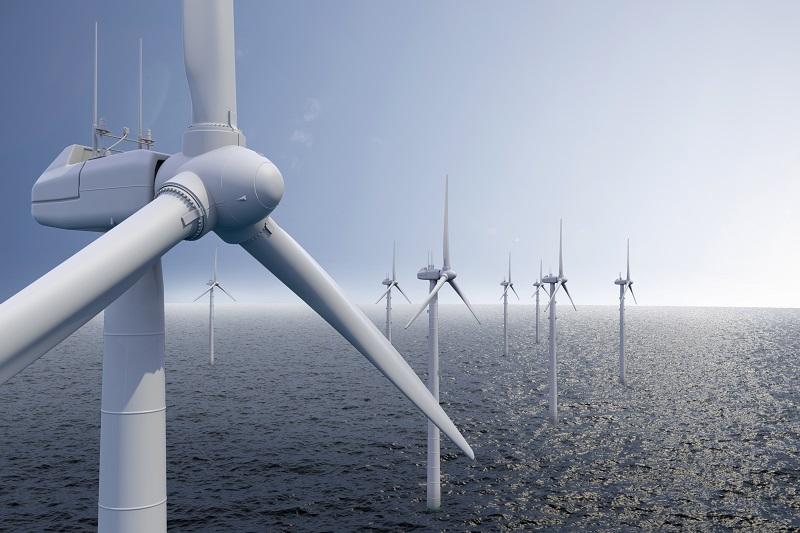 Neben den natürlichen Energiequellen wie Wasser, Wind, Gezeiten und Sonneneinstrahlung werden im Zuge der erneuerbaren Energien vor allem nachwachsende Rohstoffe verwendet. (#03)