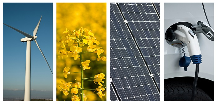 100 % erneuerbare Energien – So können wir unsere Umwelt schonen