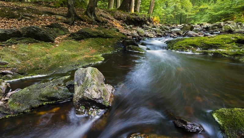 Die Baraque Michel befindet sich mitten im deutsch-belgischen Naturpark Hohes Venn. Bereits seit 1912 empfängt sie Reisende und stellt ihnen eine Unterkunft in traditioneller Atmosphäre zur Verfügung. (#01)