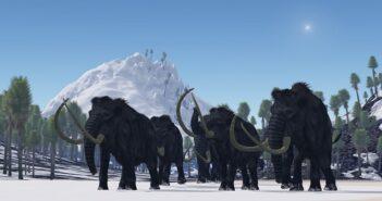 Mammut Energy AG: Gesellschaft mit Pleite-Garantie