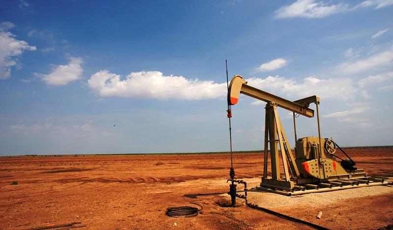 Als die Mammut Energy AG mit ihrem Vorhaben begann, waren die genauen Ausmaße des Areals noch nicht einmal erfasst. (#01)