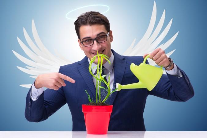 Business Angels stellen Unternehmensgründern nicht nur Fremdkapital zur Verfügung. Oftmals haben sie langjährige Erfahrung und unterstützen und beraten ebenso gerne. Ist die Pflanze einmal genug gedüngt - also genug Unterstützung in die Firma geflossen - ziehen sich die Investoren (Unternehmensengel) zurück. (#2)